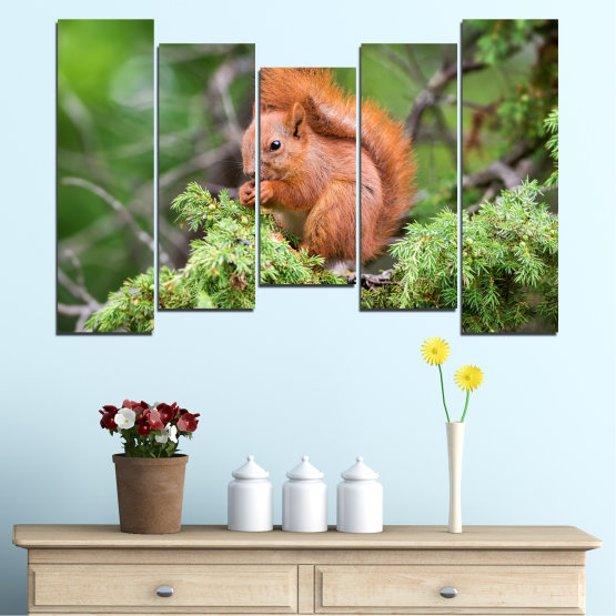 Canvas prints & wall decorative panels - 5 pieces №0205 » Green, Brown, Gray, Dark grey » Animal, Forest, Squirrel Form #4