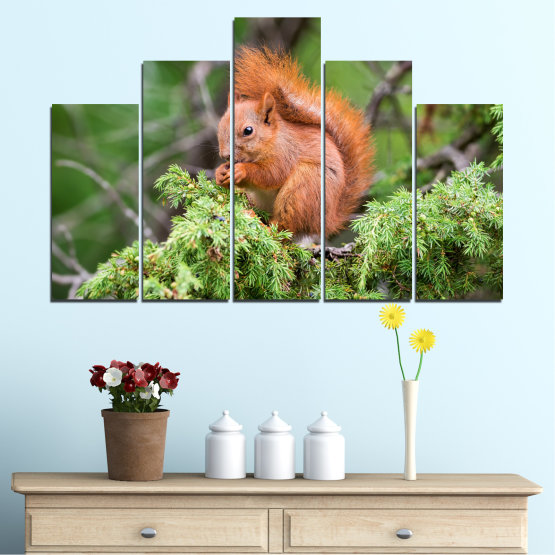 Canvas prints & wall decorative panels - 5 pieces №0205 » Green, Brown, Gray, Dark grey » Animal, Forest, Squirrel Form #5