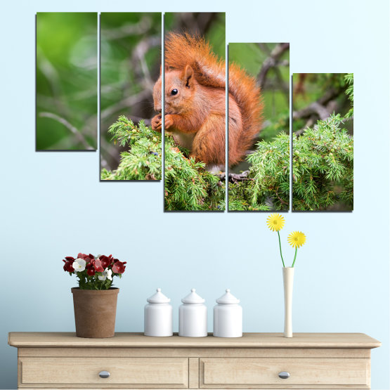Canvas prints & wall decorative panels - 5 pieces №0205 » Green, Brown, Gray, Dark grey » Animal, Forest, Squirrel Form #7