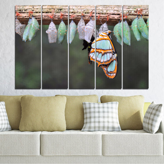 Canvas prints & wall decorative panels - 5 pieces №0207 » Blue, Green, Orange, Gray, Beige, Dark grey » Nature, Animal, Butterfly Form #2
