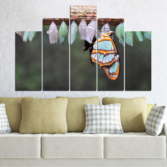 Canvas prints & wall decorative panels - 5 pieces №0207 » Blue, Green, Orange, Gray, Beige, Dark grey » Nature, Animal, Butterfly Form #5