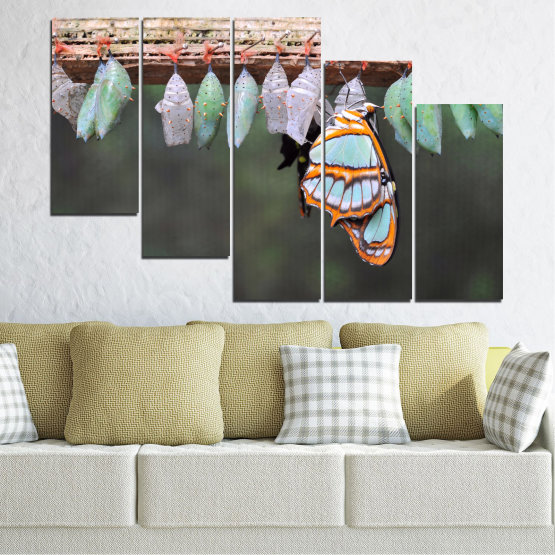 Canvas prints & wall decorative panels - 5 pieces №0207 » Blue, Green, Orange, Gray, Beige, Dark grey » Nature, Animal, Butterfly Form #7
