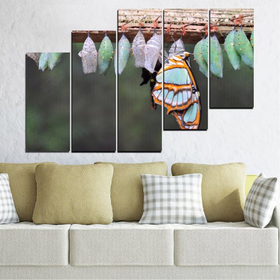 Canvas prints & wall decorative panels - 5 pieces №0207 » Blue, Green, Orange, Gray, Beige, Dark grey » Nature, Animal, Butterfly Form #8