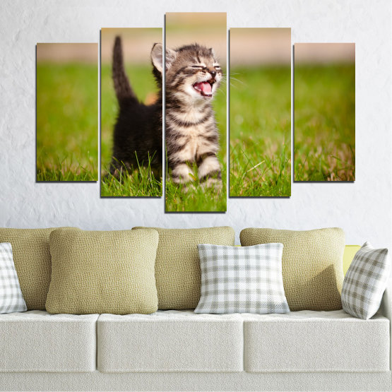 Canvas prints & wall decorative panels - 5 pieces №0215 » Green, Brown, Gray, Beige » Animal, Meadow, Cat Form #1