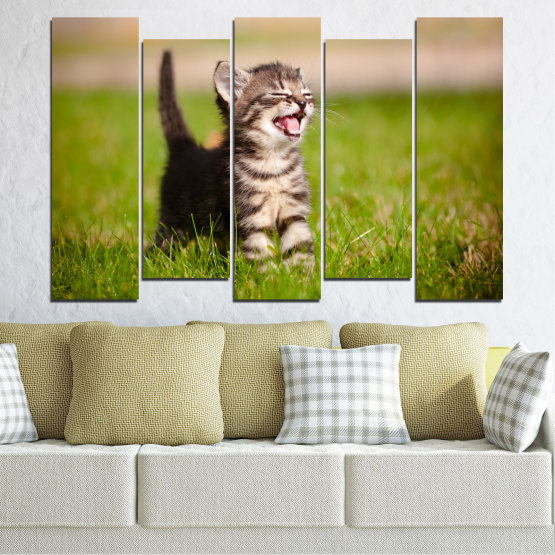 Canvas prints & wall decorative panels - 5 pieces №0215 » Green, Brown, Gray, Beige » Animal, Meadow, Cat Form #3