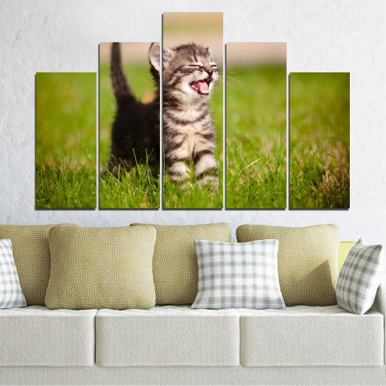 Canvas prints & wall decorative panels - 5 pieces №0215 » Green, Brown, Gray, Beige » Animal, Meadow, Cat Form #5