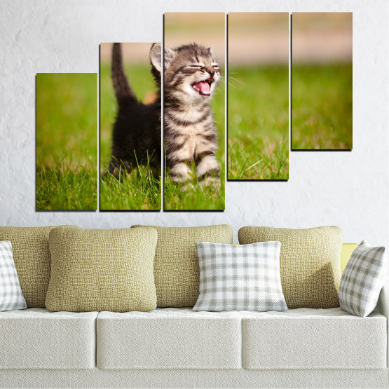 Canvas prints & wall decorative panels - 5 pieces №0215 » Green, Brown, Gray, Beige » Animal, Meadow, Cat Form #8