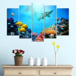 Sea, Water, Fish » Blue, Turquoise, Black, Dark grey