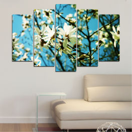 Nature, Flowers, Sun » Turquoise, Black, Gray, Beige, Dark grey