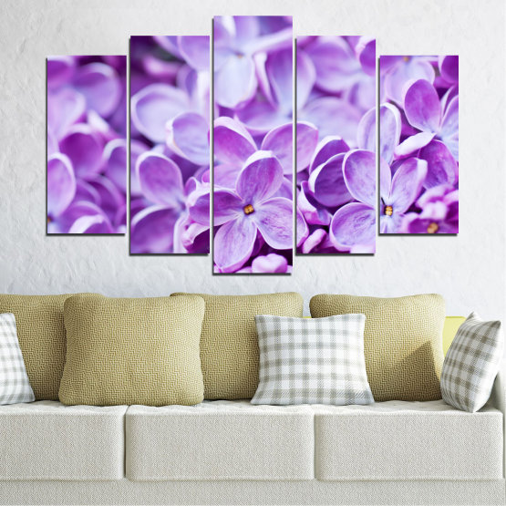 Canvas prints & wall decorative panels - 5 pieces №0228 » Purple, Gray, White » Flowers, Nature, Lilac Form #1