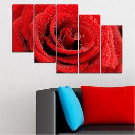 Декоративни панели и картини от канава - от 5 части №0238 Цветя 7-ма Форма
