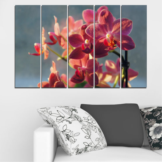 Canvas prints & wall decorative panels - 5 pieces №0252 » Red, Pink, Brown, Gray, Dark grey » Flowers, Orchid, Bouquet Form #2