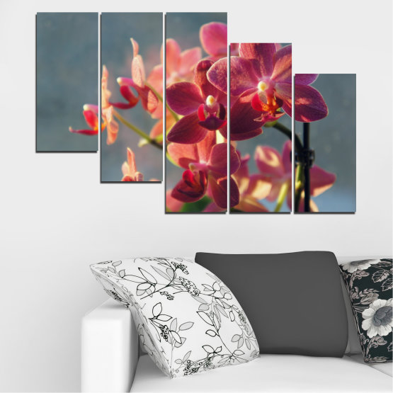 Canvas prints & wall decorative panels - 5 pieces №0252 » Red, Pink, Brown, Gray, Dark grey » Flowers, Orchid, Bouquet Form #7