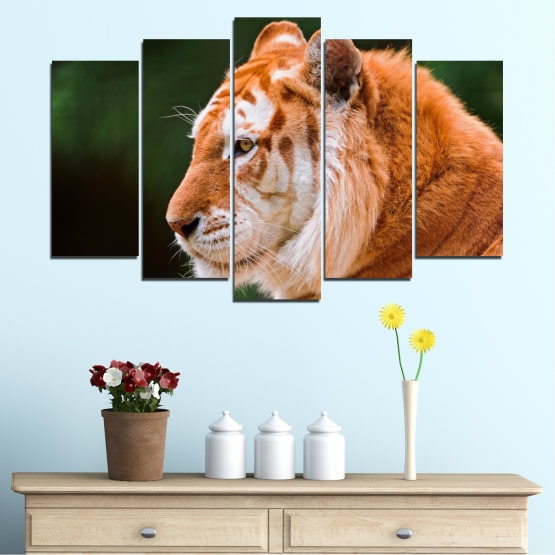 Canvas prints & wall decorative panels - 5 pieces №0253 » Green, Orange, Brown, Black » Animal, Portrait, Tiger Form #1