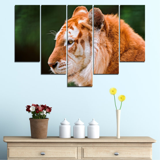 Canvas prints & wall decorative panels - 5 pieces №0253 » Green, Orange, Brown, Black » Animal, Portrait, Tiger Form #6