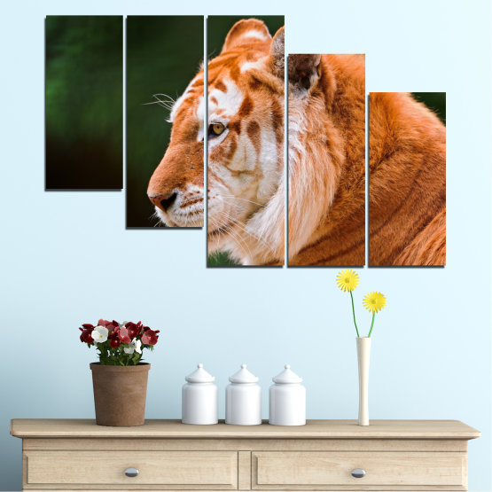 Canvas prints & wall decorative panels - 5 pieces №0253 » Green, Orange, Brown, Black » Animal, Portrait, Tiger Form #7