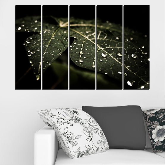 Canvas prints & wall decorative panels - 5 pieces №0285 » Green, Brown, Black, Gray, Dark grey » Nature, Drops, Leaf Form #2
