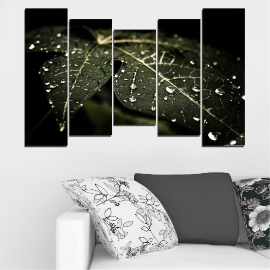 Canvas prints & wall decorative panels - 5 pieces №0285 » Green, Brown, Black, Gray, Dark grey » Nature, Drops, Leaf Form #4