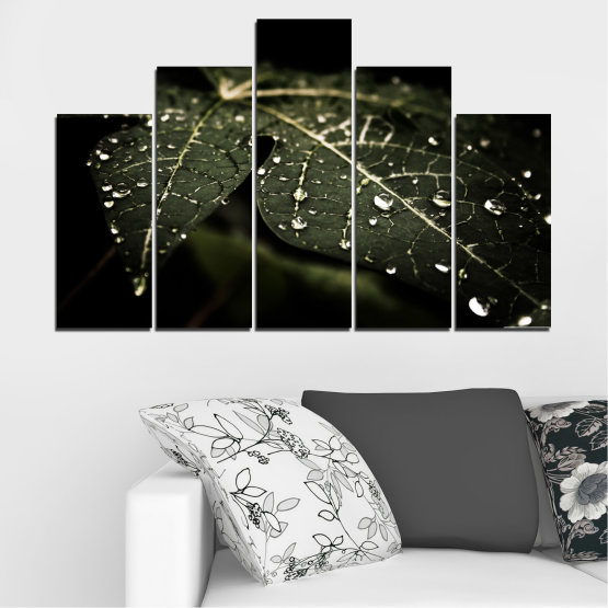 Canvas prints & wall decorative panels - 5 pieces №0285 » Green, Brown, Black, Gray, Dark grey » Nature, Drops, Leaf Form #5