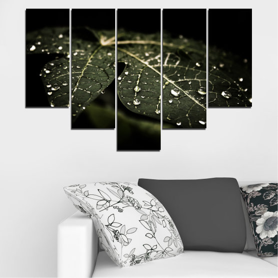 Canvas prints & wall decorative panels - 5 pieces №0285 » Green, Brown, Black, Gray, Dark grey » Nature, Drops, Leaf Form #6
