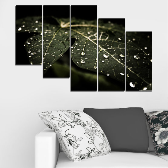 Canvas prints & wall decorative panels - 5 pieces №0285 » Green, Brown, Black, Gray, Dark grey » Nature, Drops, Leaf Form #7