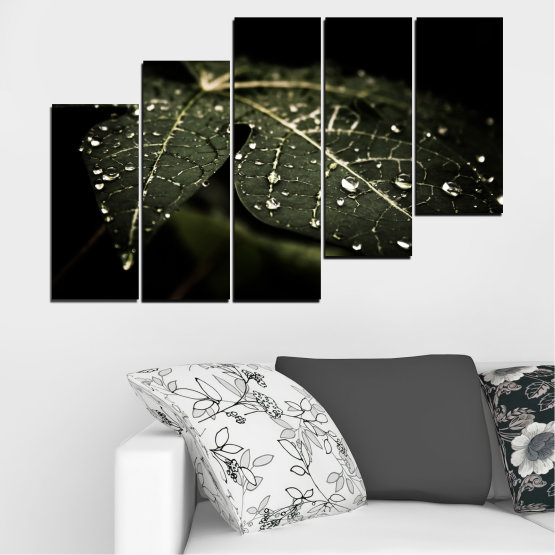 Canvas prints & wall decorative panels - 5 pieces №0285 » Green, Brown, Black, Gray, Dark grey » Nature, Drops, Leaf Form #8