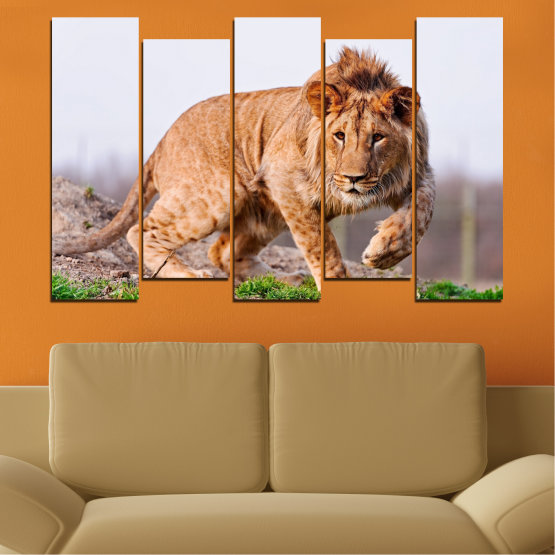 Canvas prints & wall decorative panels - 5 pieces №0295 » Orange, Brown, Gray, White, Beige » Animal, Portrait, Lion Form #3