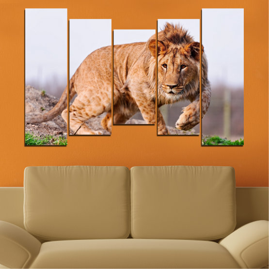 Canvas prints & wall decorative panels - 5 pieces №0295 » Orange, Brown, Gray, White, Beige » Animal, Portrait, Lion Form #4