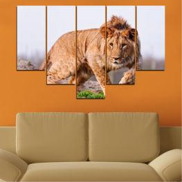 Декоративни панели и картини от канава - от 5 части №0295 Животни 6-та Форма
