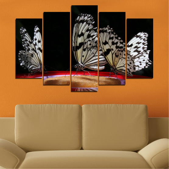 Canvas prints & wall decorative panels - 5 pieces №0302 » Red, Brown, Black, Gray, Dark grey » Animal, Butterfly, Night Form #1