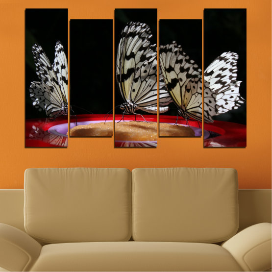 Canvas prints & wall decorative panels - 5 pieces №0302 » Red, Brown, Black, Gray, Dark grey » Animal, Butterfly, Night Form #3