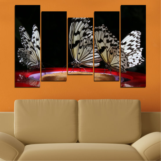Canvas prints & wall decorative panels - 5 pieces №0302 » Red, Brown, Black, Gray, Dark grey » Animal, Butterfly, Night Form #4