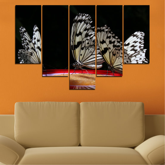 Canvas prints & wall decorative panels - 5 pieces №0302 » Red, Brown, Black, Gray, Dark grey » Animal, Butterfly, Night Form #6