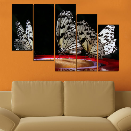 Canvas prints & wall decorative panels - 5 pieces №0302 » Red, Brown, Black, Gray, Dark grey » Animal, Butterfly, Night Form #7