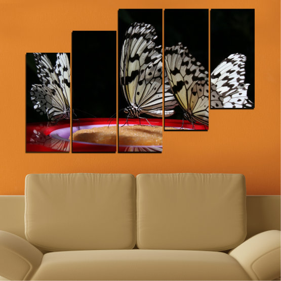 Canvas prints & wall decorative panels - 5 pieces №0302 » Red, Brown, Black, Gray, Dark grey » Animal, Butterfly, Night Form #8