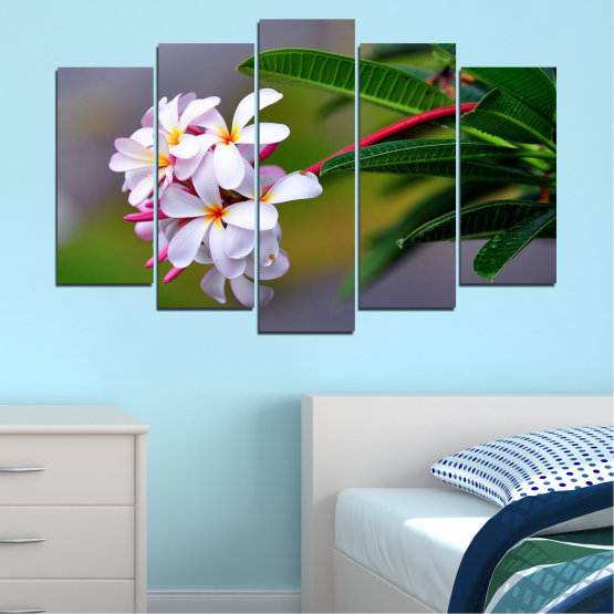 Canvas prints & wall decorative panels - 5 pieces №0322 » Green, Black, Gray, Dark grey » Flowers, Fresh, Plumeria Form #1