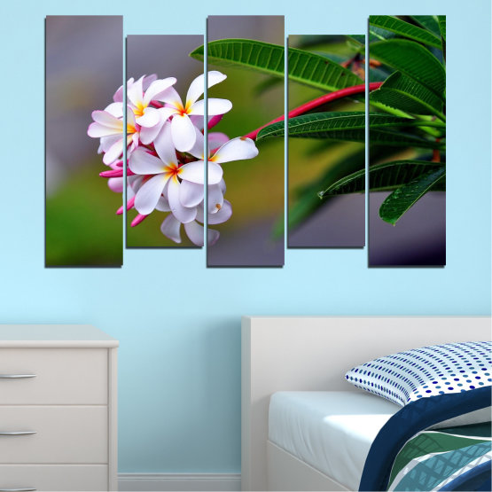 Canvas prints & wall decorative panels - 5 pieces №0322 » Green, Black, Gray, Dark grey » Flowers, Fresh, Plumeria Form #3