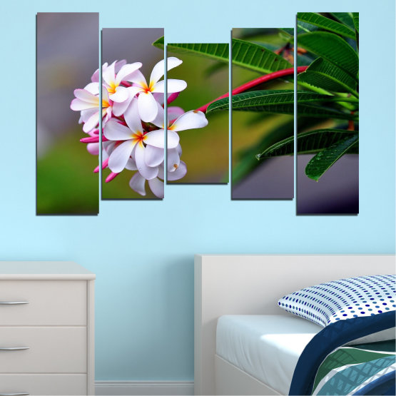 Canvas prints & wall decorative panels - 5 pieces №0322 » Green, Black, Gray, Dark grey » Flowers, Fresh, Plumeria Form #4
