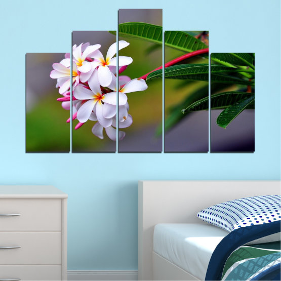 Canvas prints & wall decorative panels - 5 pieces №0322 » Green, Black, Gray, Dark grey » Flowers, Fresh, Plumeria Form #5