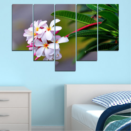 Canvas prints & wall decorative panels - 5 pieces №0322 » Green, Black, Gray, Dark grey » Flowers, Fresh, Plumeria Form #6