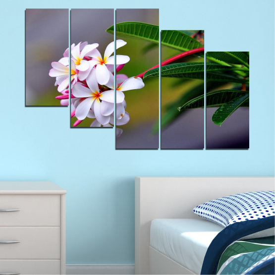 Canvas prints & wall decorative panels - 5 pieces №0322 » Green, Black, Gray, Dark grey » Flowers, Fresh, Plumeria Form #7