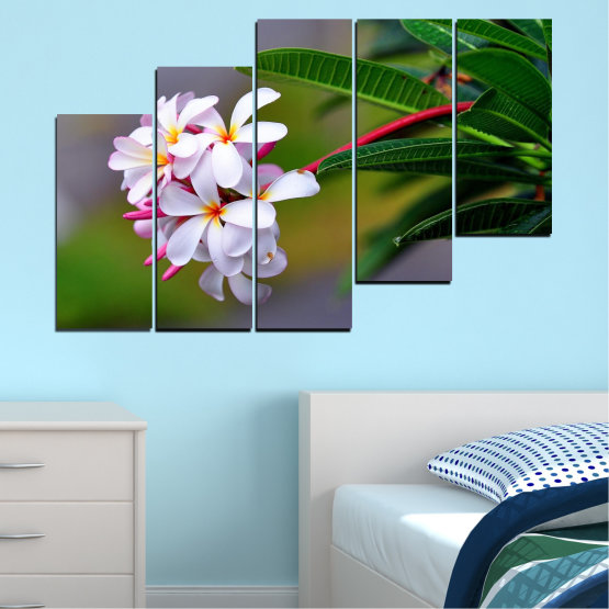 Canvas prints & wall decorative panels - 5 pieces №0322 » Green, Black, Gray, Dark grey » Flowers, Fresh, Plumeria Form #8