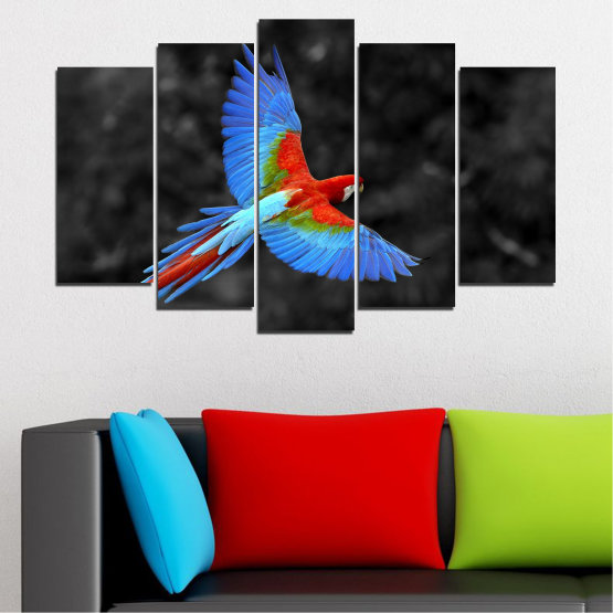 Canvas prints & wall decorative panels - 5 pieces №0334 » Blue, Turquoise, Black, Dark grey » Birds, Wings, Parrot Form #1