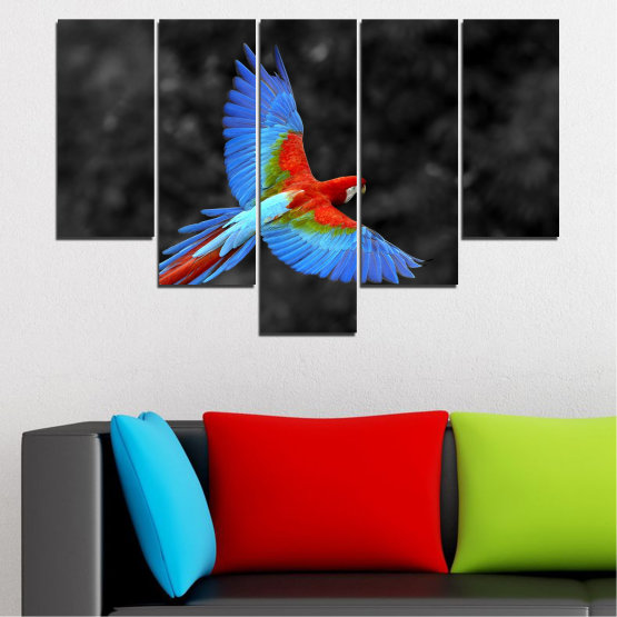 Canvas prints & wall decorative panels - 5 pieces №0334 » Blue, Turquoise, Black, Dark grey » Birds, Wings, Parrot Form #6