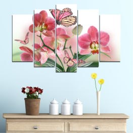 Flowers, Orchid, Butterfly » Pink, Gray, White, Beige, Milky pink
