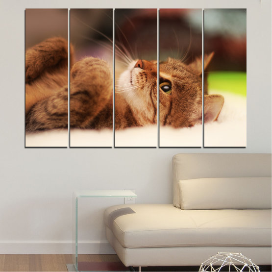 Canvas prints & wall decorative panels - 5 pieces №0377 » Brown, White, Beige, Dark grey » Animal, Portrait, Cat Form #2