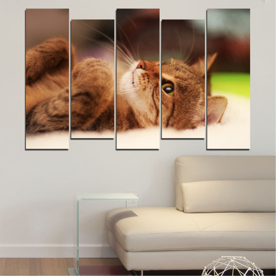 Canvas prints & wall decorative panels - 5 pieces №0377 » Brown, White, Beige, Dark grey » Animal, Portrait, Cat Form #3