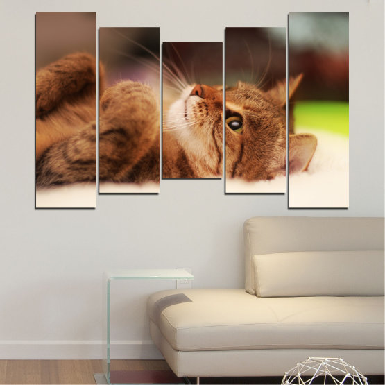 Canvas prints & wall decorative panels - 5 pieces №0377 » Brown, White, Beige, Dark grey » Animal, Portrait, Cat Form #4