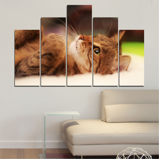 Canvas prints & wall decorative panels - 5 pieces №0377 » Brown, White, Beige, Dark grey » Animal, Portrait, Cat Form #5