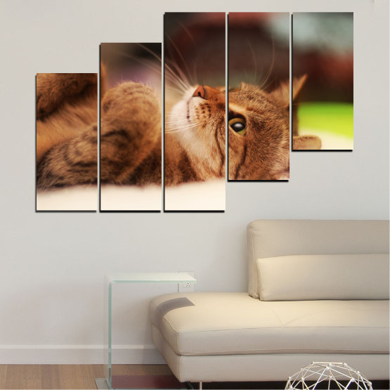 Canvas prints & wall decorative panels - 5 pieces №0377 » Brown, White, Beige, Dark grey » Animal, Portrait, Cat Form #8